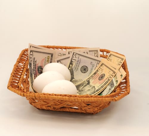 Eggs and Money All in the Same Basket